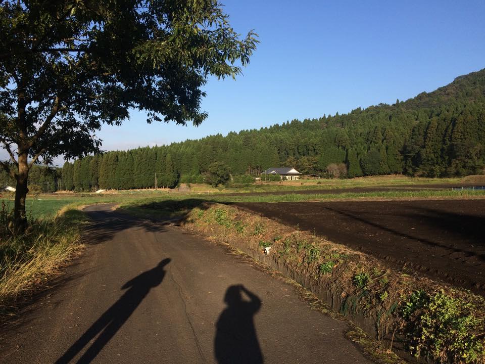 近所を朝のお散歩