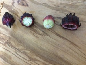 左が原型。まん丸い実の中に種が入っています。右の状態で使用します