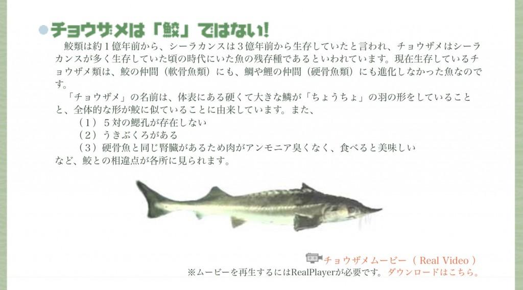 出展:niimi-gyokyou.com