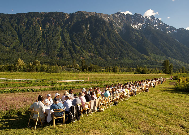 Outstanding in the Field dinner hosted at the North Arm Farm. Pemberton BC, Canada